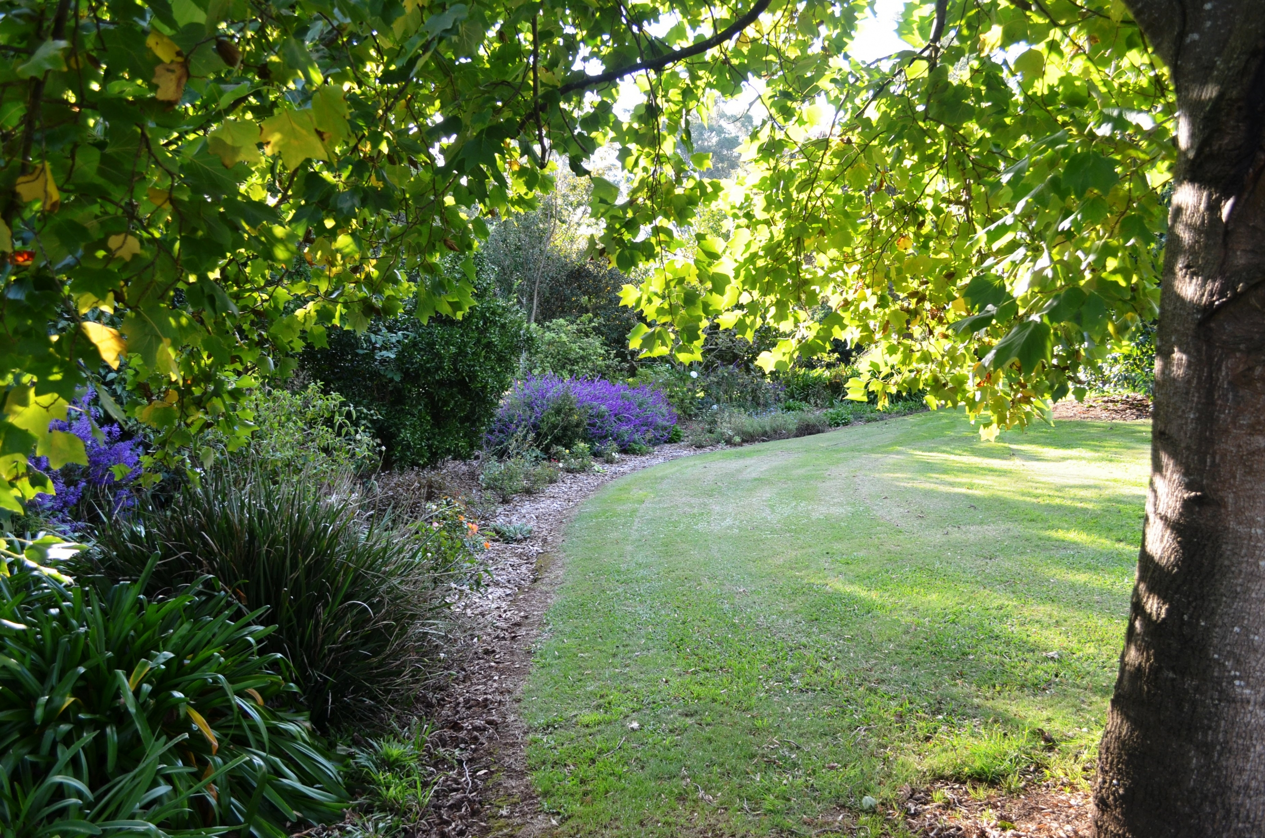 Come and take a stroll through our beautiful gardens
